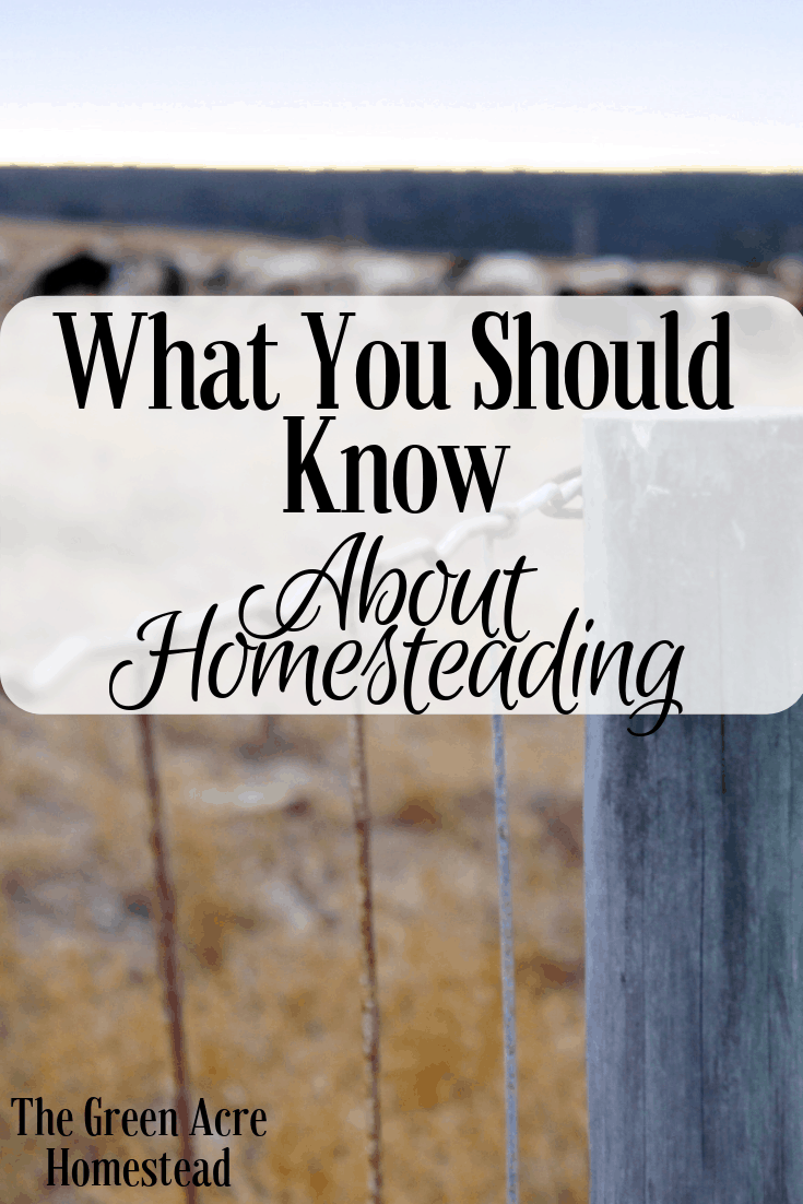 What You Should Know About Homesteading (3)