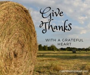 Simple Homestead Blog Hop #183 | Happy Thanksgiving!