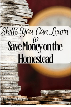 Skills You Can Learn to Save Money on the Homestead (8)