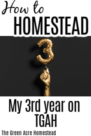 year 3 how to homestead