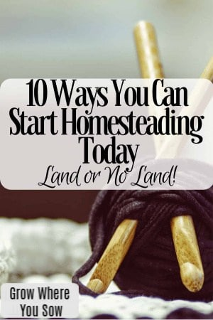 10 ways to start homesteading today