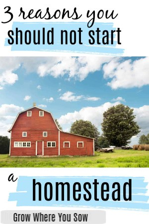 3 reasons you should not start a homestead