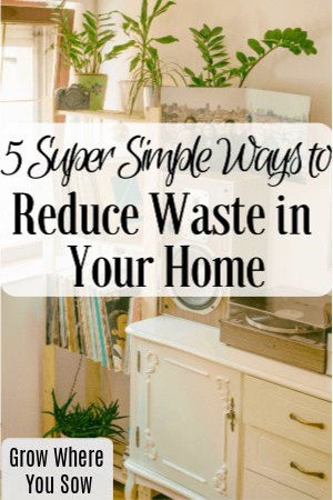 5 ways to reduce waste in your home