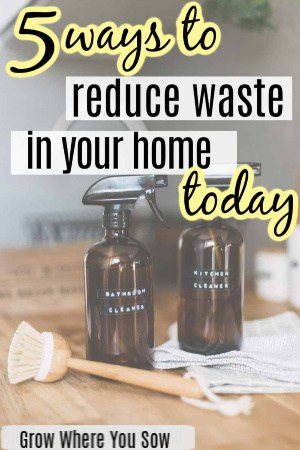 reduce waste in your home today