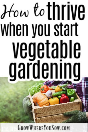 new to vegetables gardening