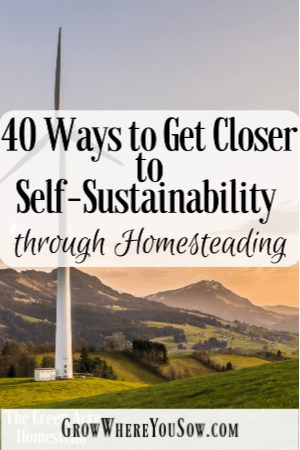 get closer to self sustainability