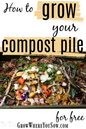 grow your compost pile for free