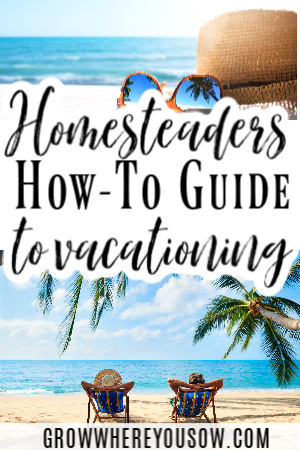 how-to guide to vacationing