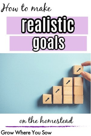 realistic goals to make