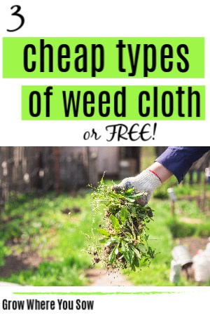 cheap types of weed cloth