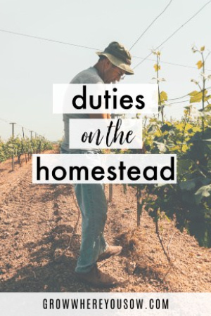 duties on the homestead