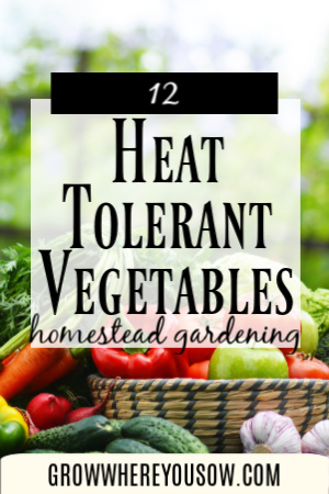 heat tolerant vegetables