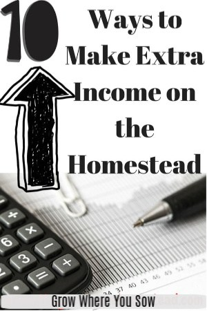 extra income on the homestead
