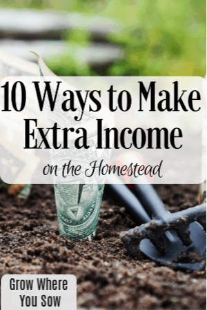 10 ways to make extra income