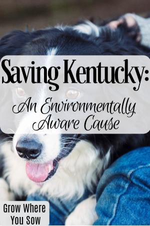 saving kentucky