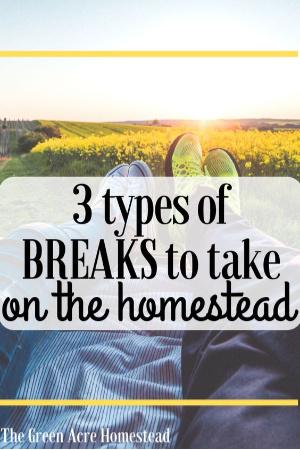 taking a break on the homestead