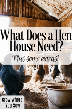what does a hen house need?