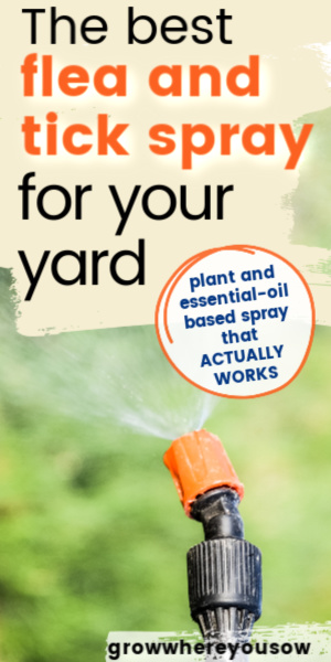 best flea and tick spray for your yard