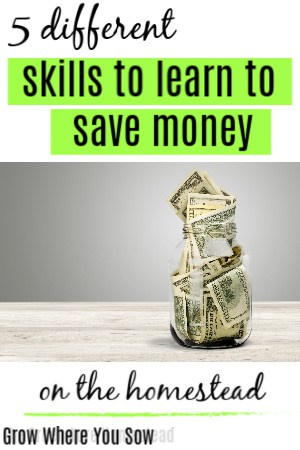 skills to learn to save money on the homestead
