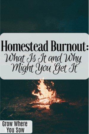 homestead burnout