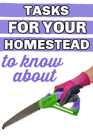 homesteading tasks