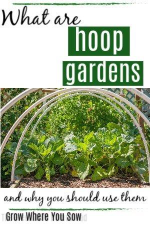 hoop frames