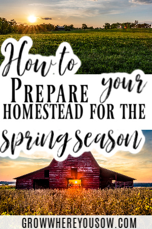 prepare your homestead for the spring season