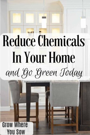 reduce chemicals in your home