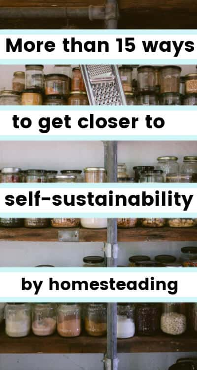 self sustainability through homesteading