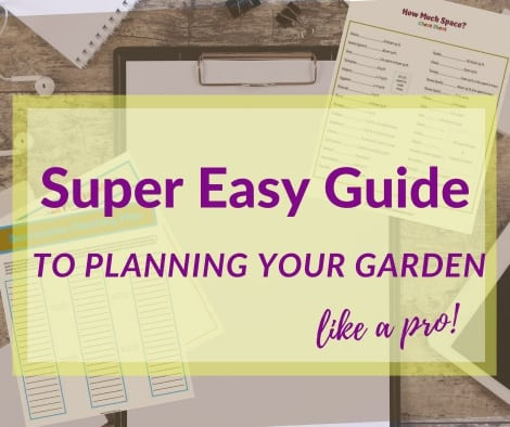 super easy guide to planning your garden