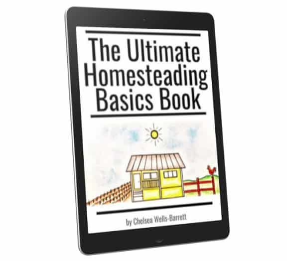 the ultimate homestead basics book