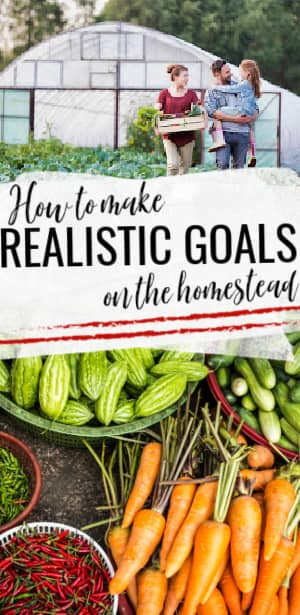 realistic goals on the homestead