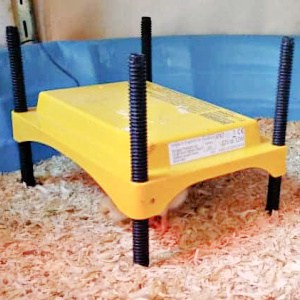 Brinsea Brooder Heat Plate for Chicks or Ducklings