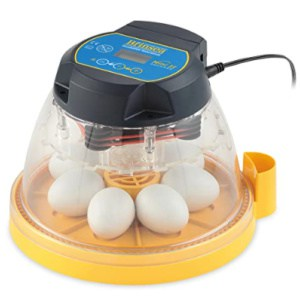 Brinsea Mini II Advance Automatic 7 Egg Incubator