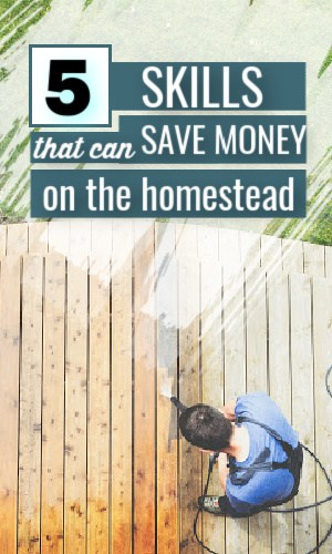 skills to save money on the homestead