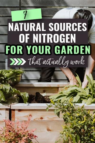 natural sources of nitrogen